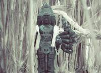 shiva under banyan tree