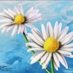 """""""Daisies #1"""" by stevebaier"""