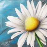 """Daisy #3"" by stevebaier"