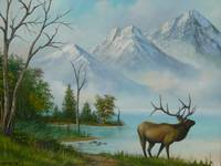 elk at mountain lake