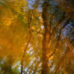 """Light pattern on a wild river...!!!"" by Woodsman"