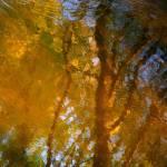 """Light pattern on a wild river...!!!"" by Woodsman"