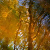Light pattern on a wild river...!!! Art Prints & Posters by Denis Collette