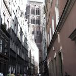 """""""Back Alley"""" by AnthroArt"""