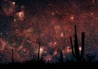 Milkyway in the Desert