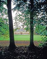 32Wren Library through Trees