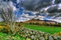The Mournes Stone Walls