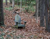 Solitary Adirondak Chair