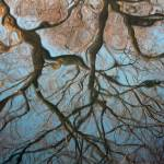 """Reflection of Tree Branches"" by nicolegesmondi"