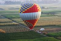Balloon landing in the corn fields of Luxor