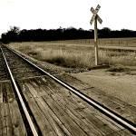 """""""Crossing"""" by javanslyke"""
