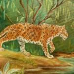 """""""Leopard"""" by vivianeagleson"""