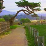 """""""Walkway"""" by GregWoodhouse"""