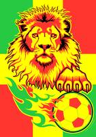 African Soccer Lion