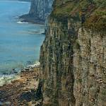 """Bempton Cliffs, Bridlington, East Yorkshire"" by tolkien"