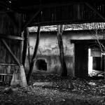 """""""Next door"""" by klintesphoto"""