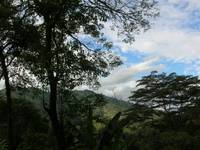Crossing the Colombian Andes 2