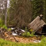 """School House - Coolidge, Montana"" by timleonhardt"