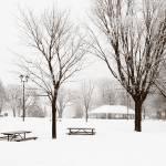 """Waterfront_WinterPark5"" by PhotographyofGrace"