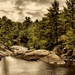 """""""JGS_SolitaryWilderness2"""" by PhotographyofGrace"""