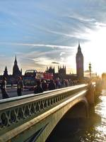 The Westminster Scene in Summer's Last Light