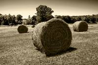 Hay Rolls in a Kansas field