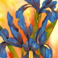 Bold & Beautiful Blue Iris Art Prints & Posters by Gayela Chapman-McKelvie