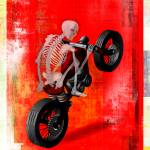 """Skeleton Biker"" by gsimanson"