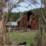 """Old Dairy Barn ... IMG_7499"" by garytrentPHOTOGRAPHYcdn"