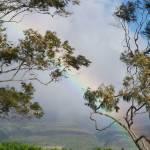 """""""Rainbow"""" by ProjectBula"""