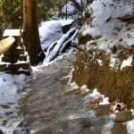 """""""Icy Steps (IMG_9304)"""" by jvandyke"""