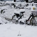 """bike in snow"" by gordonpi"