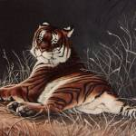 """Shakiri Bengal Tiger"" by AnimalsbyDiDi"