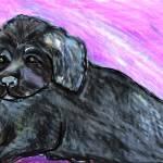 """""""Newfoundland Puppy"""" by VanAntwerpArt"""