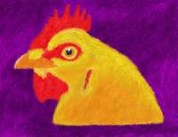 Yellow Chicken