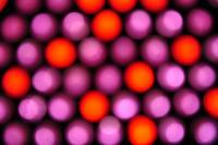 Lite Bright Purple Orange