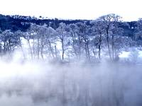 Mists of wintertime