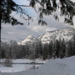 """Granby Wilderness ... IMG_0106"" by garytrentPHOTOGRAPHYcdn"