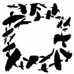 """Crow Circle"" by tedder"