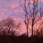"""""""Lava Sky"""" by Bogwoppit"""