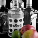 """Cocktail Bar-Black and White with Selective Color"" by LynneDaley"