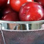 """Colander of Plums"" by LynneDaley"