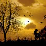 """Music Under The Sun"" by Ninas4otos"