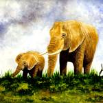"""Elephants (Mother & Baby)"" by vigliotti"