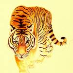 """""""Tiger Number 2"""" by vigliotti"""