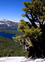 Courtright Reservoir, A view from the Dome #3