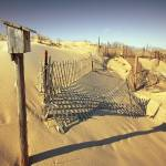 """Cape Cod Dune Fence"" by dapixara"