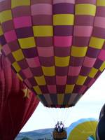 Pink & Purple Balloon