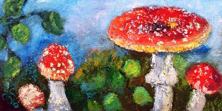 Fliegen Pilz Amanita Muscaria Oil Painting by Gine
