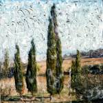 """Cypress Trees"" by ebadham"